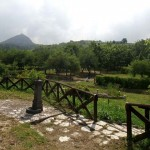 parco_ginestre(2)