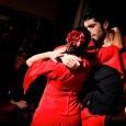 """Terzo appuntamento venerdì 12 luglio con il """"Padova World Music Festival"""". Al Castello Carrarese è il turno del flamenco con un gran galà che vedrà protagonisti danzatori, cantanti e musicisti di livello internazionale con ben nove artisti sul palco"""