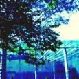 Dal 21 giugno al 4 settembre tornano gli appuntamenti estivi del Comune di Padova. Un ricco programma di spettacoli tra musica, danza e teatro nel nuovo spazio del Parco d'Europa di Padova.