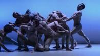 """Domenica 23 novembre, alle ore 17.00, più di 400 persone affolleranno l'Auditorium Comunale """"Andrea Ferrari"""" di Camposampiero (PD) per lo spettacolo dei BalletBoyz, vincitori del British National Dance Award come miglior compagnia del 2013"""