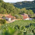 baone - azienda agricola vignale di cecilia 2