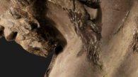 """il settembre musicale dell'Orchestra di Padova e del Veneto si apre con la prima rassegna di musica sacra """"In Principio"""", un percorso di ascolto e spiritualità che si snoda in un ciclo di tre concerti tra i principali luoghi di culto di Padova."""