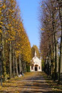 Santuario del Noce a Camposampiero