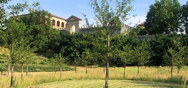 Villa dei Vescovi parco