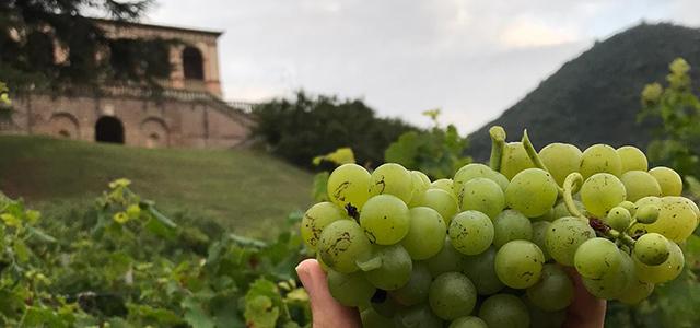 Ultimi scampoli di estate a Villa dei Vescovi